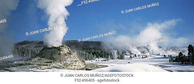 Castle geyser. Yellowstone National Park. USA
