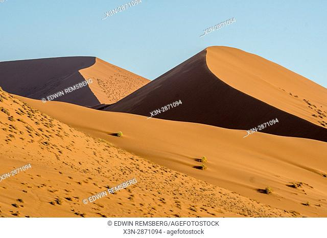 Ridges in the sand on Dune 45 in the Soussuvlei salt pan in Namib-Naukluft National Park, located in Namibia, Africa