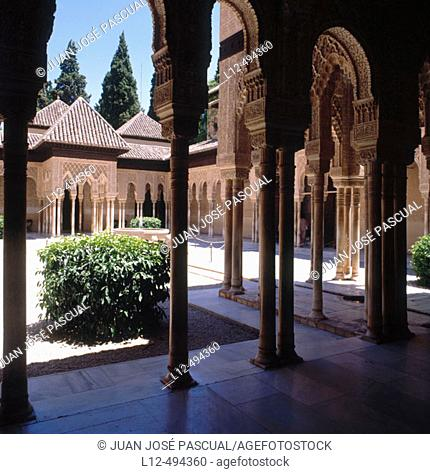 Court of the Lions, Alhambra, Granada. Andalusia, Spain
