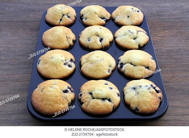 Blueberry muffins in tin