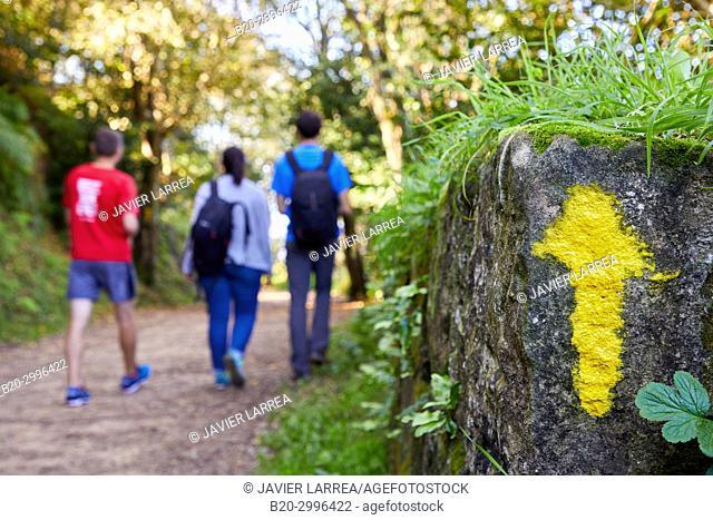 Group of tourists and guide making a tour of the Camino de Santiago, St. james Way, Pasaia, Donostia, San Sebastian, Gipuzkoa, Basque Country, Spain, Europe