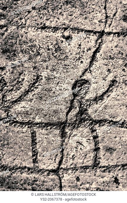 Rock engraving at Himmelstalund one of Sweden's biggest collection of petroglyphs with more than 1660 pictures. Bronze age 1800-500 B.C
