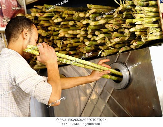 sugar cane being pressed to make fresh juice , Souq al Gomaa Friday Market in Cairo , Egypt
