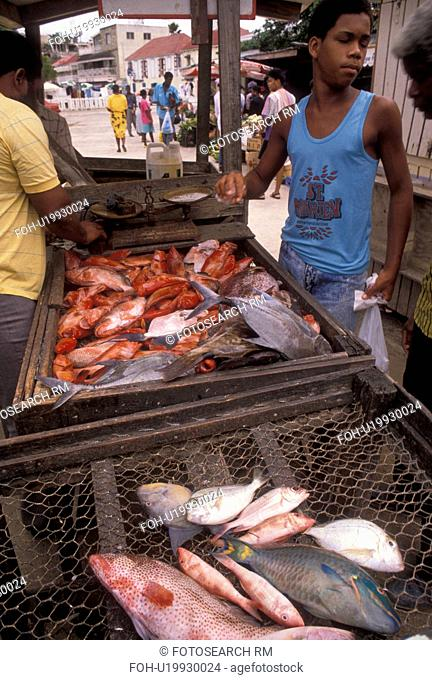 fish market, Caribbean, St. Martin, Marigot, Caribbean Islands, Local people [buying, selling] fish at fish market in Marigot the French capital of the island...