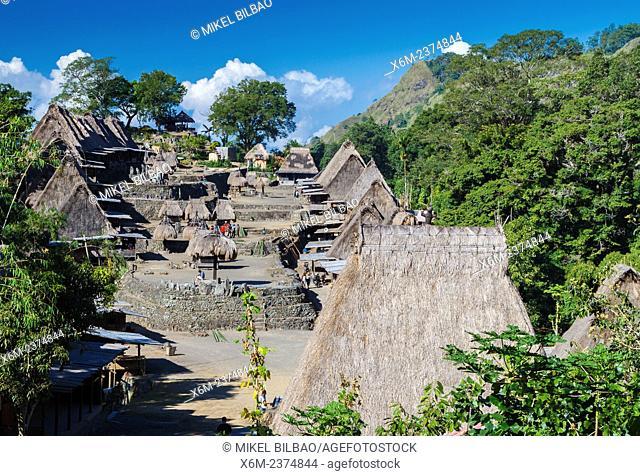 Bena village. Flores island. Indonesia, Asia
