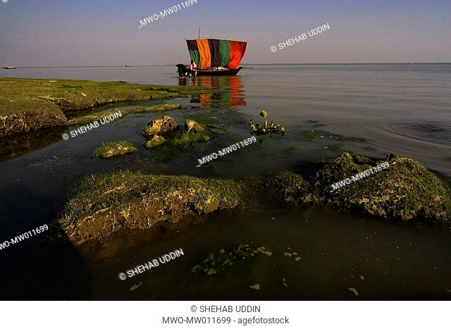 A boat steams in with the colorful sails in Dhal Char, Vola , Bangladesh January 14, 2008