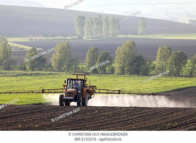 Agricultural chemical treatment on sugar beets, Puy de Dome, France, Europe