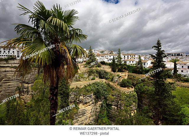 The hanging gardens of Cuenca over El Tajo Gorge with whitewashed houses of Ronda Spain
