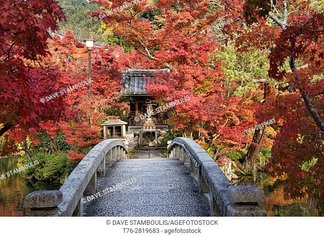 Autumn colors at Eikan-do Zen Temple, Kyoto, Japan