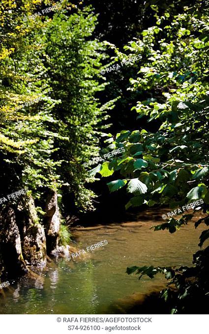 Cascada del cubo en la Selva de Irati, Navarra, Spain