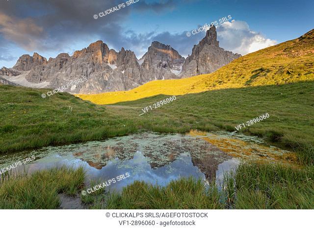 Baita Segantini, Pale of San Martino, Trento province, Dolomites, Trentino Alto Adige, Italy, Europe. Cimon della Pala reflected into a small lakes at sunset