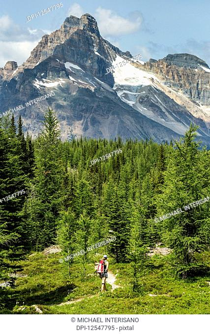 Female hiker on pathway in a mountain meadow with mountain, blue sky and clouds in the background; British Columbia, Canada