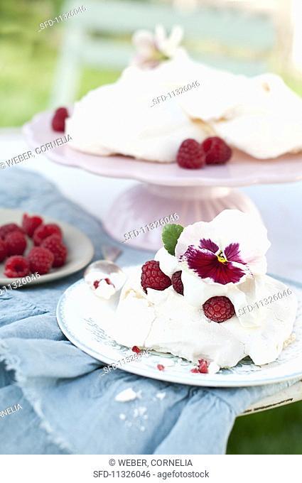 Raspberry pavlova with cream decorated with viola flower