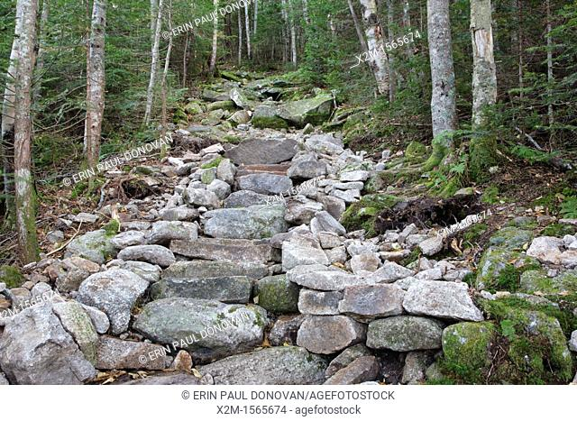 Stone steps along the Mt Tecumseh Trail in the White Mountains, New Hampshire USA