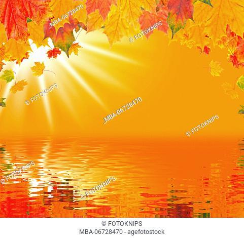 Autumn mood at the lake