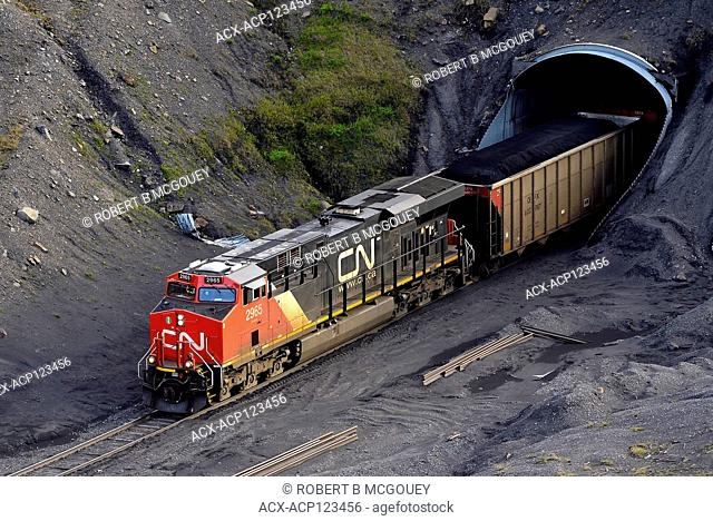 A Canadian National freight train pulling open top rail cars loaded with coal through a tunnel at the Teck coal mine near Cadomin Alberta Canada