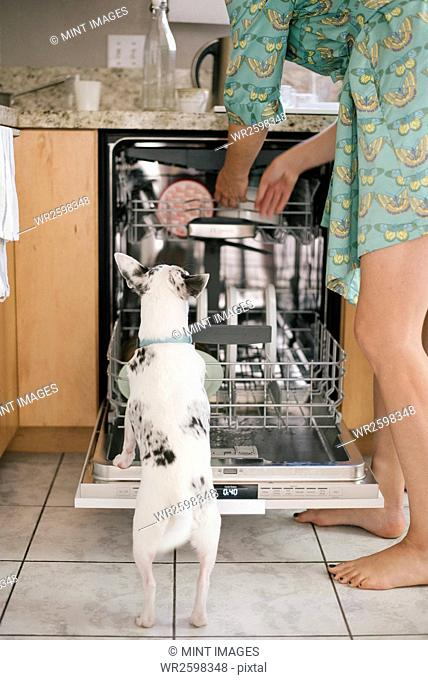 Barefoot woman and white dog standing in front of an open dishwasher in a kitchen