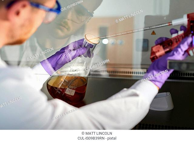 Scientist in laboratory using electronic pipette in conical flask