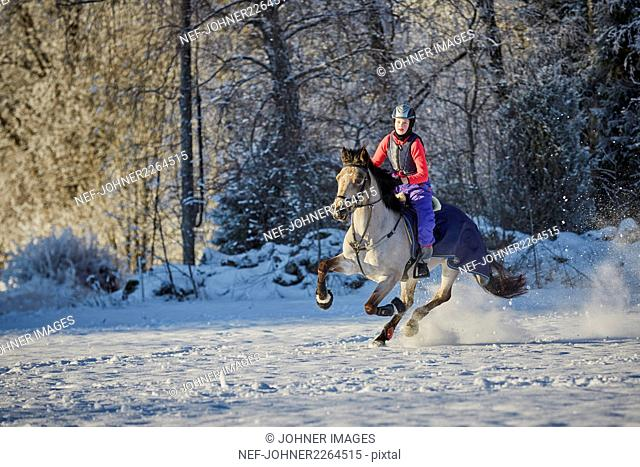 Woman riding horse in winter scenery