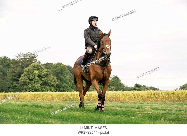 Man riding a bay thoroughbred horse across a field