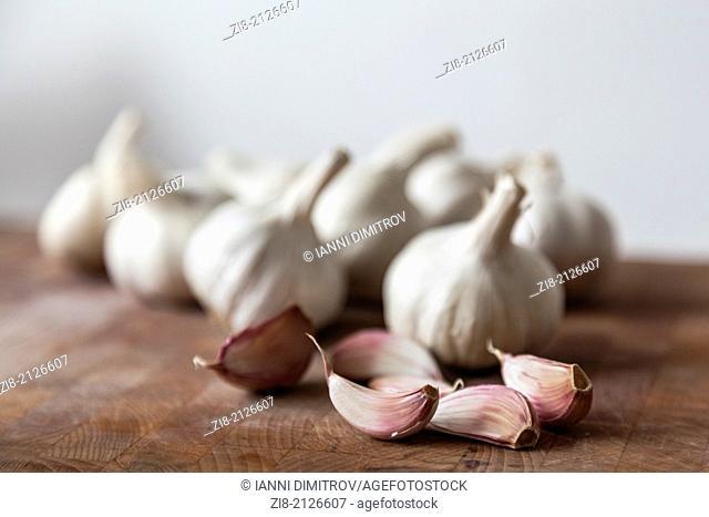 Garlic-Allium sativum