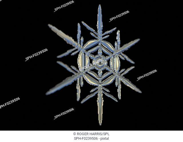 Snowflake, illustration