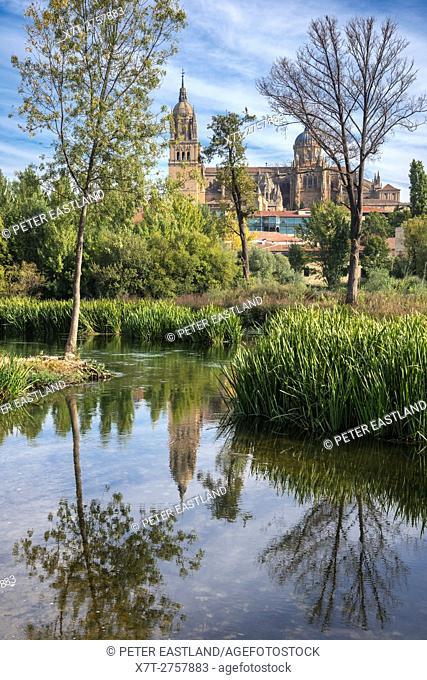 Salamanca Cathedral seen from across the River Tormes, Salamanca, Spain