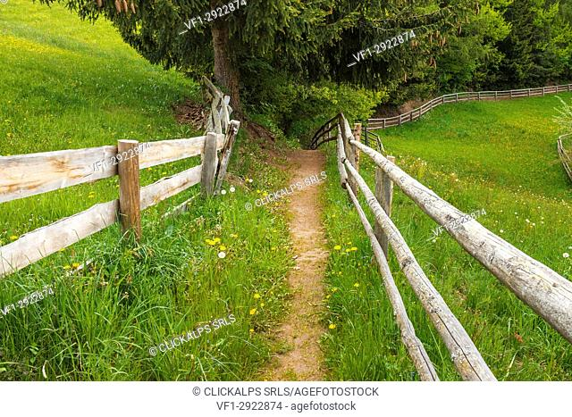 A Path with fence, Funes valley, Bolzano province, South Tyrol region, Trentino Alto Adige, Italy, Europe