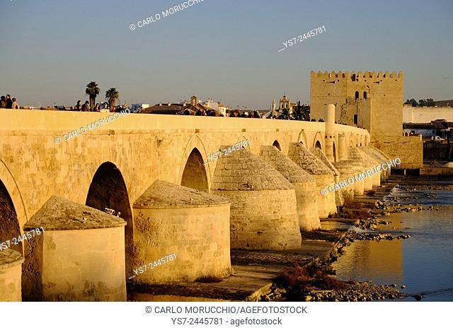 Puente Romano, the Roman bridge, and Torre de la Calahorra, Cordoba, Andalucia, Spain, Europe