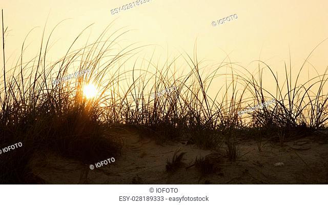 Sunset over beach sand dune on Bald Head Island, North Carolina