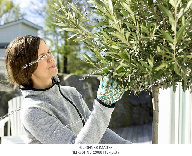 Mid adult woman gardening