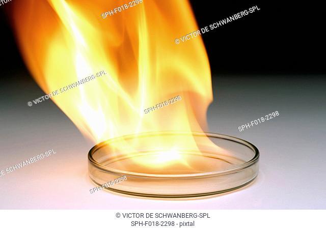 Petri dish with flames, illustration