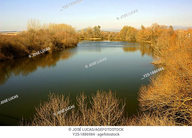 Alagon river, Coria, Caceres-province, Spain