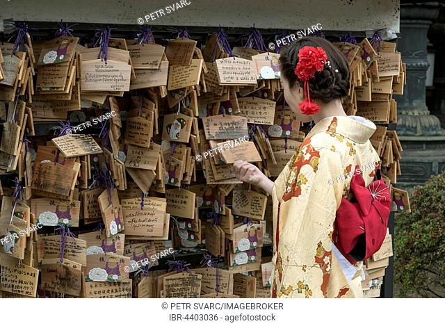 Woman dressed in traditional kimono looks at Ema wish plaques at Ueno Toshogu Shrine, Tokyo, Japan