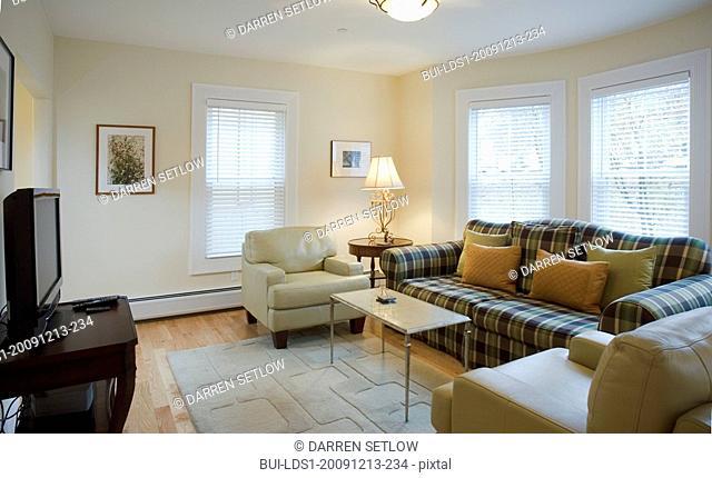 Living room with plaid sofa