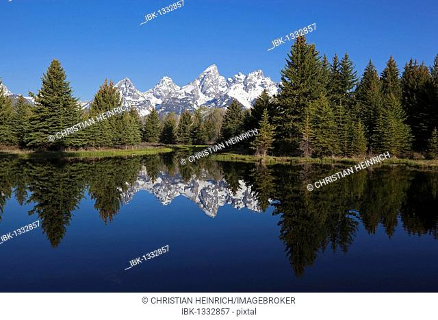 Schwabacher Landing on Snake River, Grand Teton National Park, Wyoming, America, United States