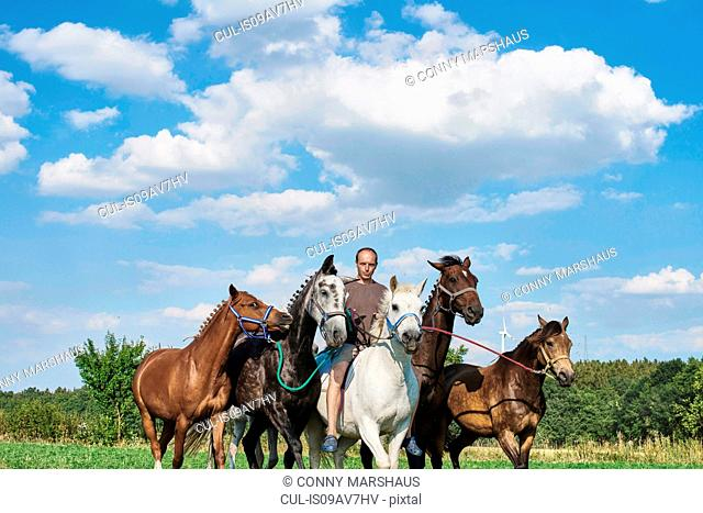 Mid adult man riding and leading six horses in field