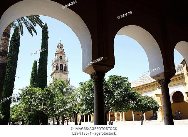 Torre de Alminar, Códoba Cathedral and Mosque, Andalucia, Spain