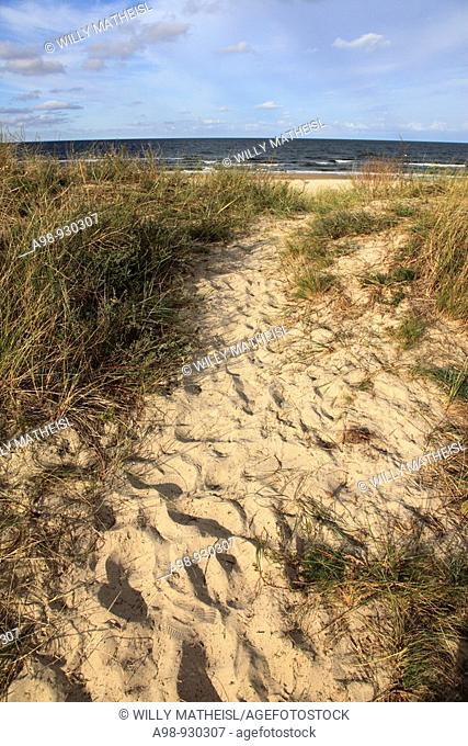 sandy pathway with footprints to the beach on the Island Usedom, West Pomerania, Baltic Sea, Germany, Europe