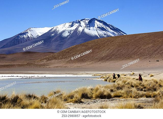 Visitors watching the flamingos on Laguna Hedionda, Salar de Uyuni, Southern Altiplano, Bolivia, South America