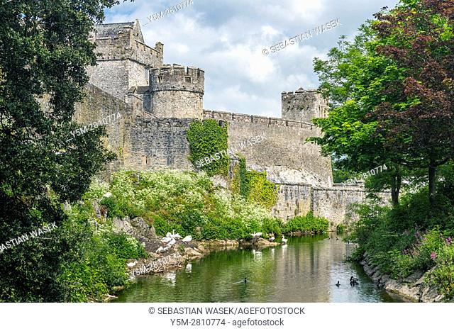 Cahir Castle, County Tipperary, Munster, Ireland, Europe