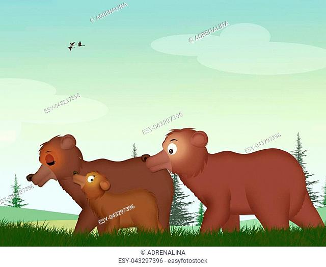 illustration of brown bears in the forest