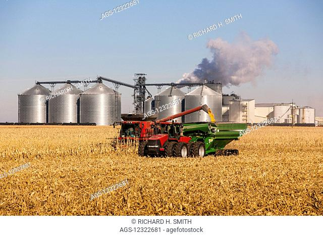 A farmer harvests his corn crop near the Poet Biorefinery, an ethanol producer, and a corn field; Groton, South Dakota, United States of America