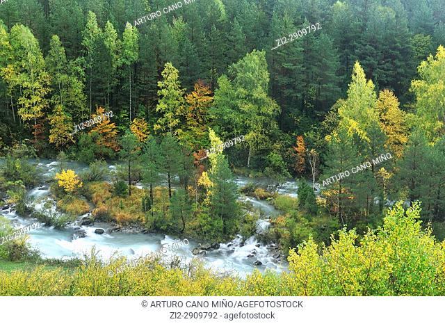 The river Ara. Autumn on Valley of Ordesa and Monte Perdido National Park. Aragonese Pyrenees, Huesca province, Spain