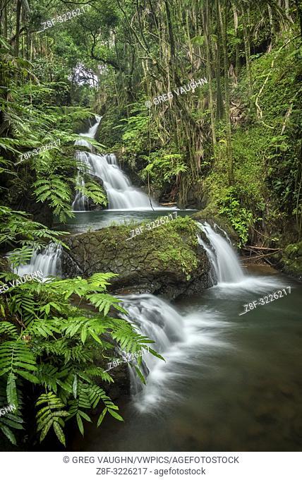 Waterfalls on Onomea Stream, Hawaii Tropical Botanical Garden, Island of Hawaii