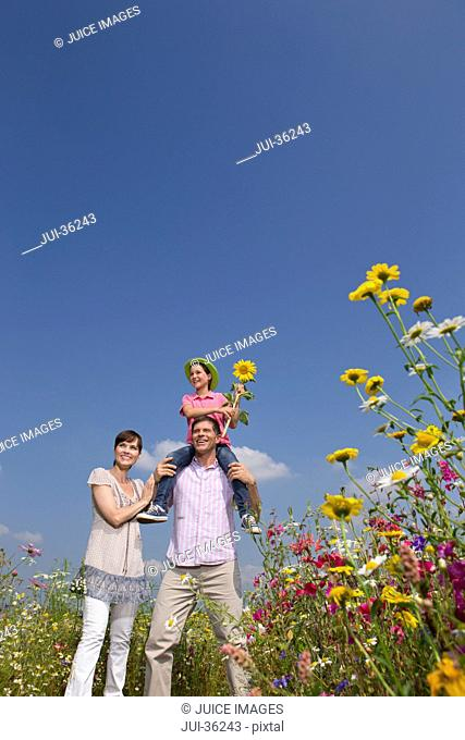 Smiling family among wildflowers in sunny meadow
