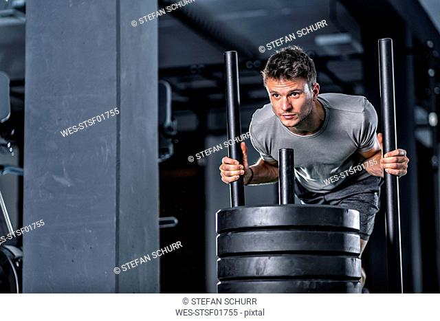 Athletic young man exercising with weight sled at gym