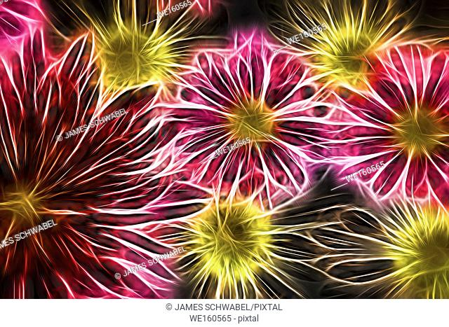 Abstract glowing neon flowers