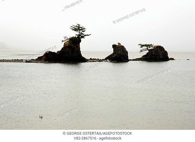 Schooner Rocks, Lincoln City, Oregon