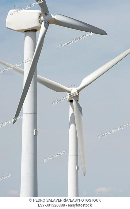 two windmills for renewable electric energy production, La Muela, Saragosa, Aragon, Spain